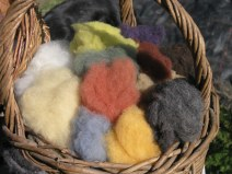 plant dyed wools
