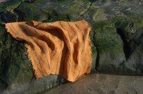 Orange2 small file